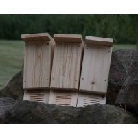 Bat roosting boxes x 3