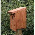 Multi Species Bird Nest Box, Nest Boxes & Habitats