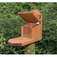 Squirrel Feeder - RS