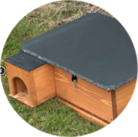hedgehog house image