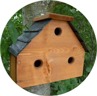 nest box image